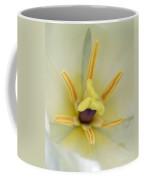 Spring Tulips 201 Coffee Mug