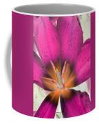 Spring Tulips - Photopower 3110 Coffee Mug