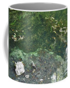 Spring Water At The Grotto Coffee Mug