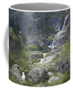 Spring Waterfall In The Tetons Coffee Mug