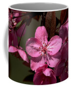 Springs Bloom Coffee Mug