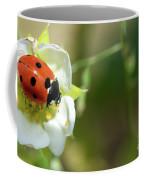Springtime - Animals Coffee Mug