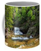 Springtime At Saint Mary's Falls Virginia Coffee Mug