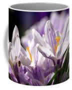 Springtime Color Coffee Mug