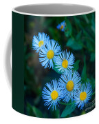 Springtime In Grand Teton Coffee Mug