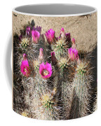 Springtime In The Desert Coffee Mug