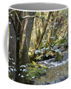Springtime Stream In The Smokies Coffee Mug