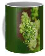 Sprouting Grapes Coffee Mug