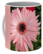 Square Framed Pink Daisy Coffee Mug