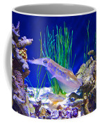 Squid In Monterey Aquarium-california Coffee Mug