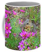 Squirrel Among Coreopsis In Huntington Gardens In San Marino-california   Coffee Mug