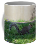 Squirrel At A Stand Still Coffee Mug