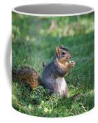 Squirrel Eating A Nut - Eugene Oregon Coffee Mug