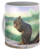 Squirrel Eating Crab Apple Coffee Mug