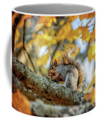 Squirrel In Autumn Coffee Mug
