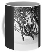 Squirrel In Low Branches Coffee Mug