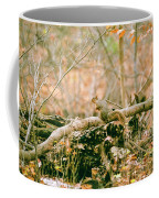 Squirrel In The Woods  Coffee Mug