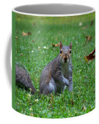 Squirrel Iv Coffee Mug