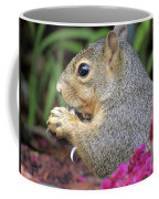 Squirrel - Morning Snack 02 Coffee Mug