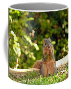 Squirrel On A Log Coffee Mug