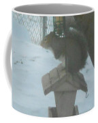 Squirrel On Bird Feeder Coffee Mug