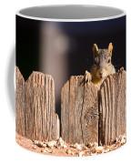 Squirrel On The Fence Coffee Mug