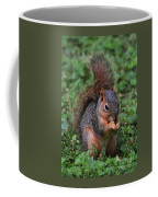 Squirrel Portrait # 3 Coffee Mug