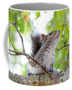 Squirrel With Personality Coffee Mug