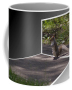 Squirrel World Coffee Mug