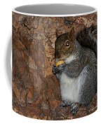 Squirrell Coffee Mug