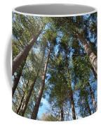 Squirrels Highway  Coffee Mug