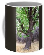 Squirrels Live Here Coffee Mug