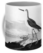 St. Augustine, Florida Coffee Mug