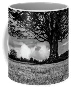 St. Benedict Abbey Single Tree In Summer Coffee Mug