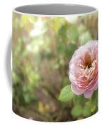 St. Cecilia Shrub Rose, Pink Rose Originally Produced By The Br Coffee Mug