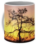 St Johns River Tree Coffee Mug