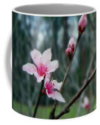 Stages Of Spring Coffee Mug