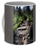 Stair Stone Walkway In The Forest Coffee Mug