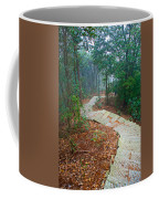 Stairs Down Mountain Coffee Mug
