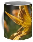 Stamin Coffee Mug