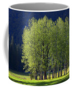 Stand Of Trees Yosemite Valley Coffee Mug