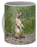Standing Guard Coffee Mug