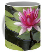 Standing Tall In The Pond Coffee Mug