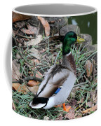 Mallard On Watch Coffee Mug