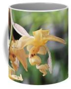 Stanhopea Orchid Coffee Mug