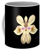Star Flower Coffee Mug
