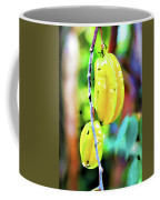 Star Fruit  Coffee Mug