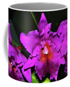 Star Of Bethlehem Orchid 006 Coffee Mug