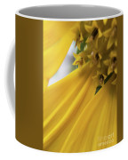 Star Tails Coffee Mug