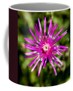 Starburst Of The Wildflowers Coffee Mug